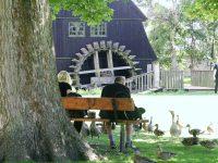 Nyt liv til Lyngbys gamle møller