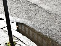 Vandpyt i Regnvejr, foto : ABW