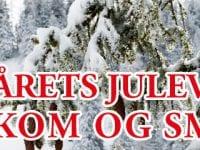 Kom og smag vores to julevine