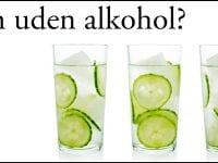 Nu kan du købe alkoholfri Gin hos Holte Vinlager