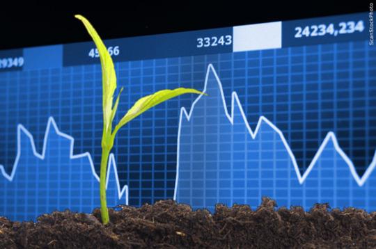 Landbrugets Økonomi 2019