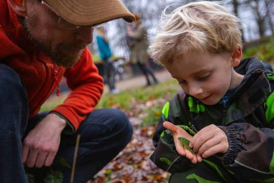 Stor succes for City Nature Challenge