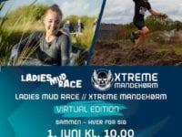 Virtuel forhindringsløb, plakat: Dansk Firmadræt