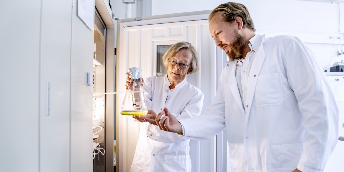 Hele bakteriesamfund kan sikre os ny antibiotika