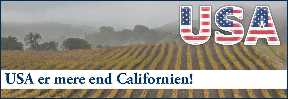 2 sublime vine fra USA!